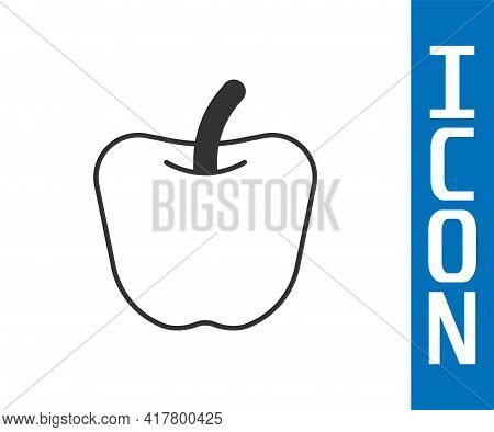 Grey Apple Icon Isolated Grey Background. Excess Weight. Healthy Diet Menu. Fitness Diet Apple. Vect
