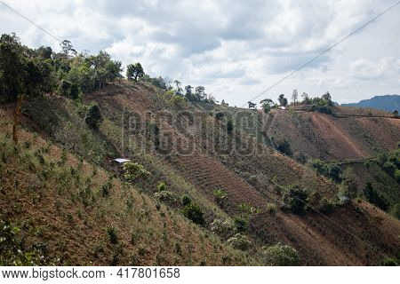 A Beautiful Hillside With Crops Growing Underneath Some Clouds Along The Hike From Kalaw To Inle Lak