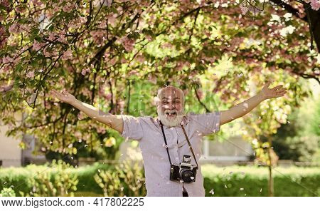 Senior Bearded Man Photographing. Professional Photographer Designer. Happy Under Petal Rain. Man To