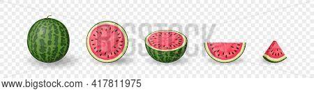 Watermelon Set. Set Of Fruits. Summer Fruit Collection On Transparent Background. Vector Illustratio