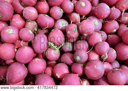 Still Life With Crop Of Many Ripe Red Radishes As Background Top View Close Up