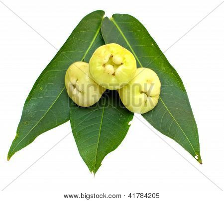 Rose Apples Or Green Chomphu On White Background