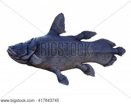 Mawsonia Fish Side Profile 3d Illustration - Mawsonia Is An Extinct Lobe-finned Predatory Fish That