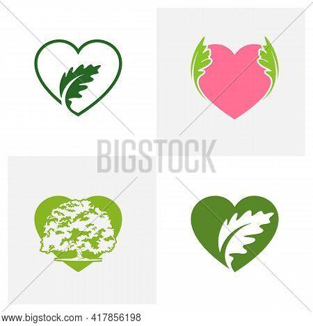Set Of Love Oak Leaf Logo Design Vector Illustration, Creative Oak Tree Logo Design Concept Template