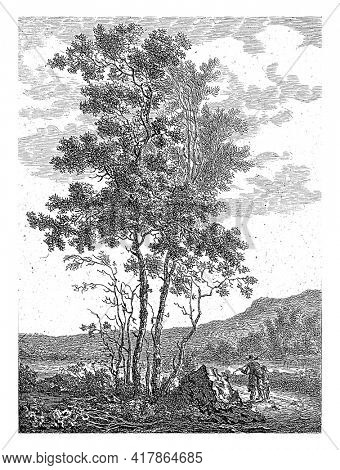 Hilly landscape with tall trees and two figures on a road.