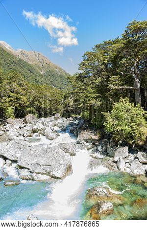 Rocky Stream Flows Between Trees Over Stony Base In South Island Scenery.