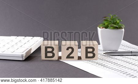 Concept Word B2b On The Wooden Blocks On The Gray Background From Green Flower And Chart.