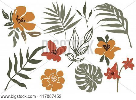 Vector Tropic Leaves And Flower. Jungle Plant, Monstera Leaf, Palm Frond, Exotic Floral. Modern Set