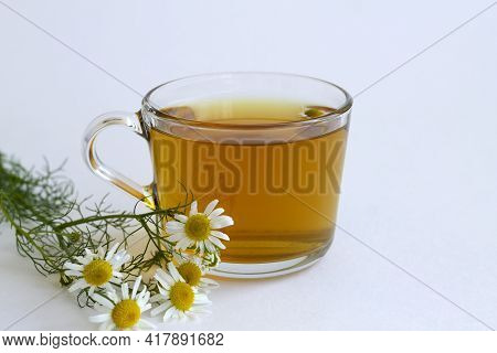 Close Up Mug Of Chamomile Tea. Glass Cup Of Iced Herbal Chamomile Tea On A White Table With Copy Spa