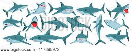 Sea Shark Vector Cartoon Set Icon. Vector Illustration Sea Fish Of Shark On White Background .isolat