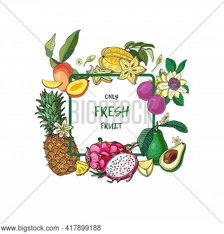 Exotic Fruits Card.avocado,carambola,mango,pitahaya,pineapple Passion Fruitbright Summer Vector Illu
