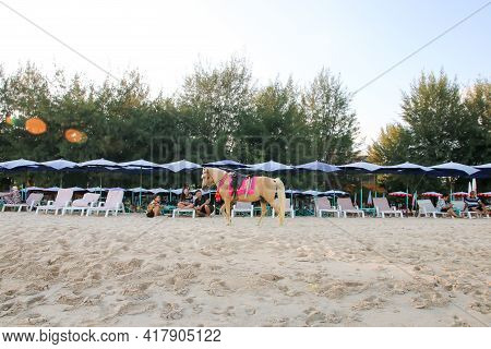 Phetchaburi, Thailand - December 29, 2018 : The Walking Horse For Rent, Riding Service For Tourists