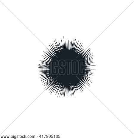 Sea Urchin Graphic Icon. Sea Urchin Sign Close Up Isolated On White Background. Sea Life Symbol. Vec