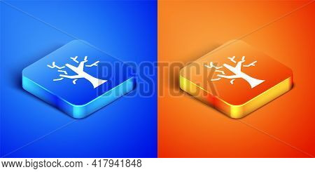 Isometric Withered Tree Icon Isolated On Blue And Orange Background. Bare Tree. Dead Tree Silhouette