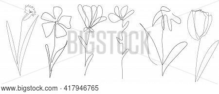 Set Of Vector Single One Line Drawn Set Of Flowers. Handdrawing Outline Illustration Isolated On Whi