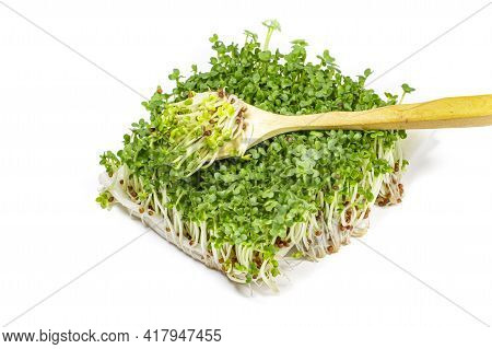 Large Bunch Of Micro Greenery With Spoon On White Isolated, Label Concept For Vegan Food Or Super Fo