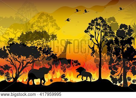 Forest Fire Burns In Australia. Forest Fires With Silhouette Of Wild Animals. Burning Forest Spruces