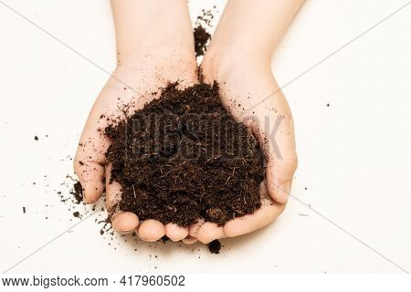 The Potting Soil Or Peat For Gardening In Little Hands Of Child. The Child Is Holding The Ground For