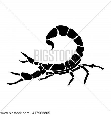 Zodiac Sign Scorpio Silhouette, One Of The 12 Horoscope Signs, Or Poisonous Arthropod Scorpion Vecto