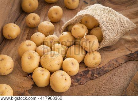 Organic Yellow Creole Potato - Solanum Phureja