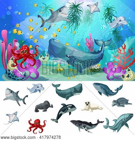 Cartoon Sea And Ocean Fauna Concept With Underwater Animals On Colorful Marine Landscape Vector Illu