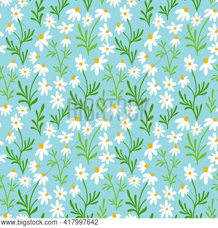 Chamomile And Daisy Seamless Pattern. Wildflower Print Design With Hand Drawn Flowers On Dark Backgr