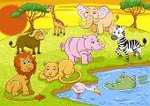 group of african safari animal. no Gradients, no Effects, no mesh, no Transparencies. poster