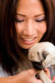 pretty Asian female holding puppy against white background poster