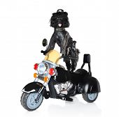 Poodle in leather jacket riding on a black police motorcycle poster