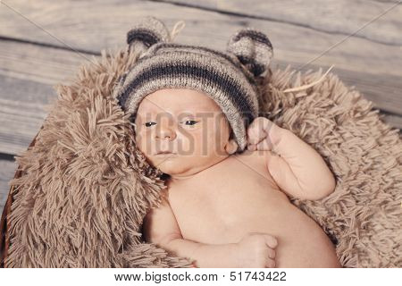 Teddy Bear Baby