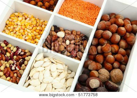 Assortment of chestnut,beans, dry briar, nuts etc in white wooden box