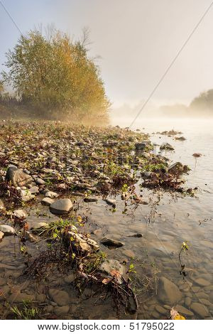 Verticall River Pebble Beach In Foggy Morning