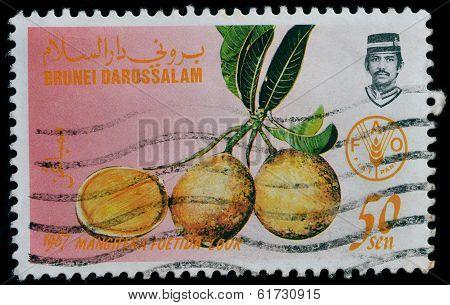 Brunei Darussalam Postage stamp