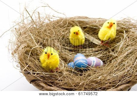 Easter fledglings with wooden eggs
