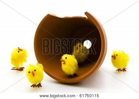Easter fledglings with plant pot