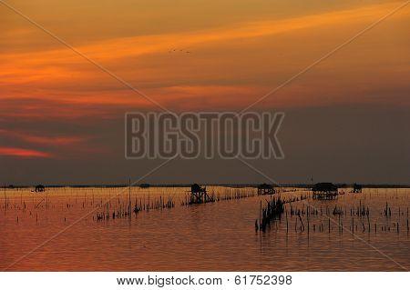 Fisherman House At Bangsai