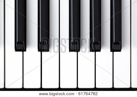 Keyboard music synthesizer