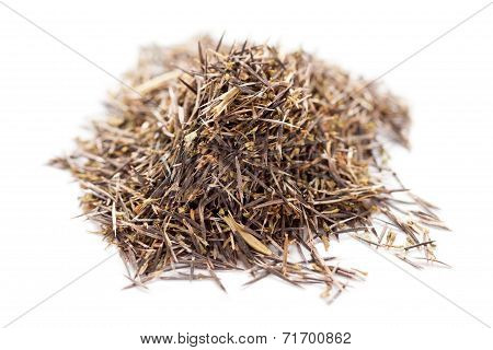 Marigold dried seed