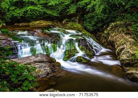 Serene Smoky Mountain Stream