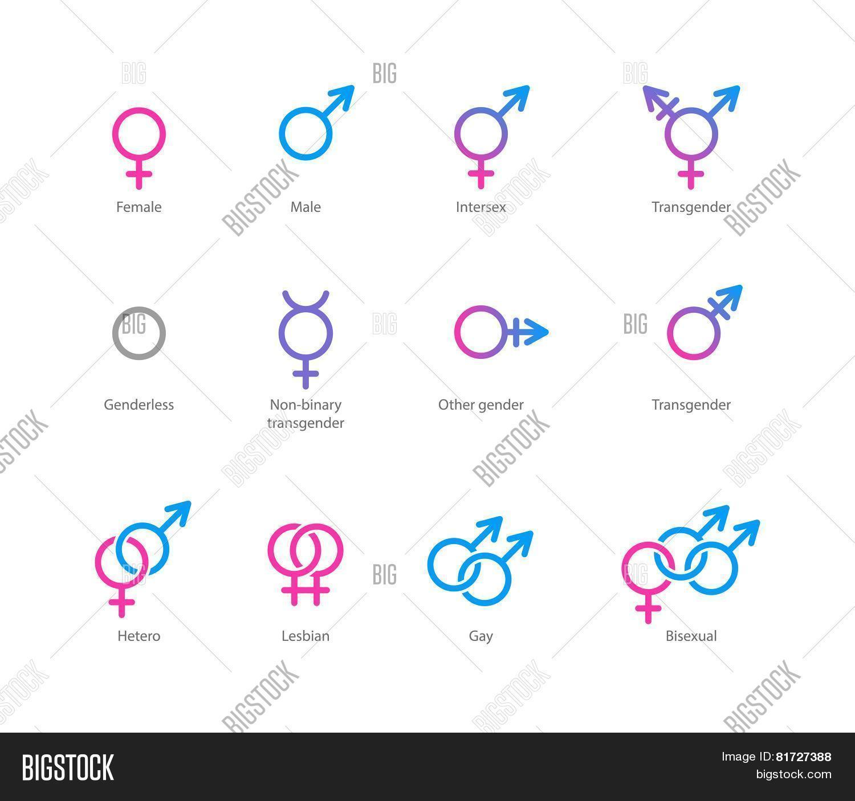 Gender Symbol Icon Vector Photo Free Trial Bigstock
