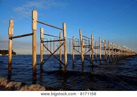 Worn wooden pier loaden with white egrets poster