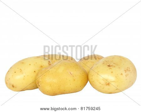 Potatos . Isolated