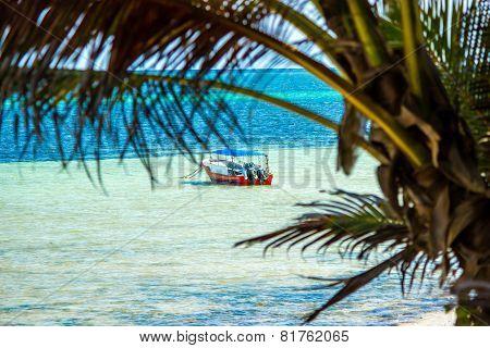 African Coastline