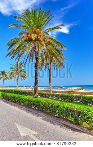 Seafront beachcoast in Spain. Suburb of Barcelona Catalonia poster