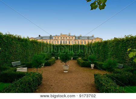 Avenue Of Bushes  In Palace Formal Garden