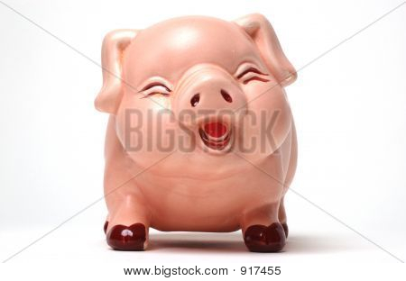 Laughing Piggy Bank Direct On White