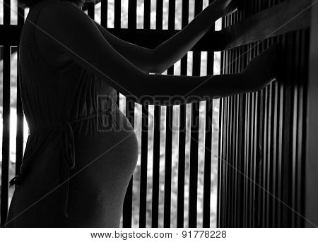 Pregnant woman in jail or prison