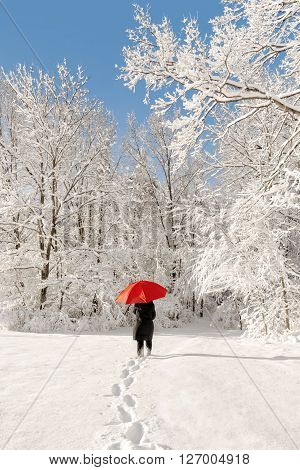 A beautiful winter snow scene with a woman walking with a red umbrella as the snow clings to the trees.