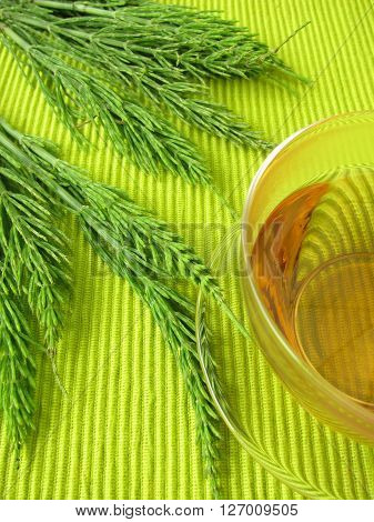 Herbal tea with field horsetail in cup