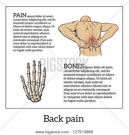 Lumbar pain in a man back pain in a human vector outline sketch, color illustration with concept of disease back, violation of waist, lumbar vertebrae and intervertebral discs